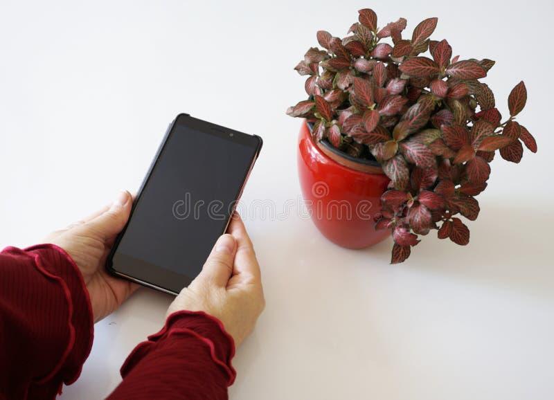 Téléphone intelligent d'écran noir chez des mains de la femme sur la table photographie stock libre de droits