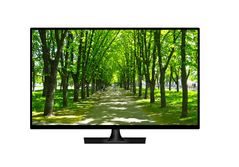 Téléviseur avec l'image du parc vert d'isolement image stock