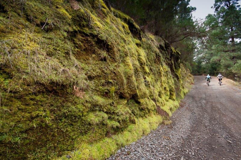Ténérife, Îles Canaries, Espagne - Parque Nacional del Teide images stock