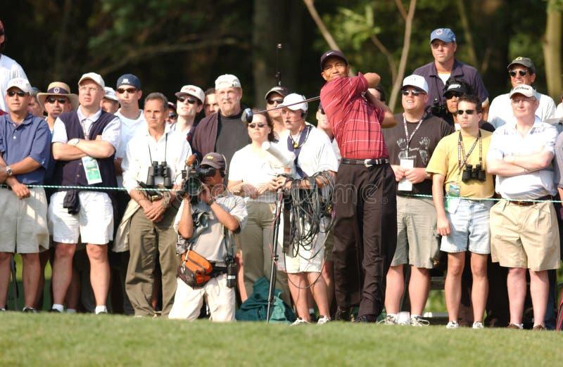 Tés de Tiger Woods hors fonction photos stock