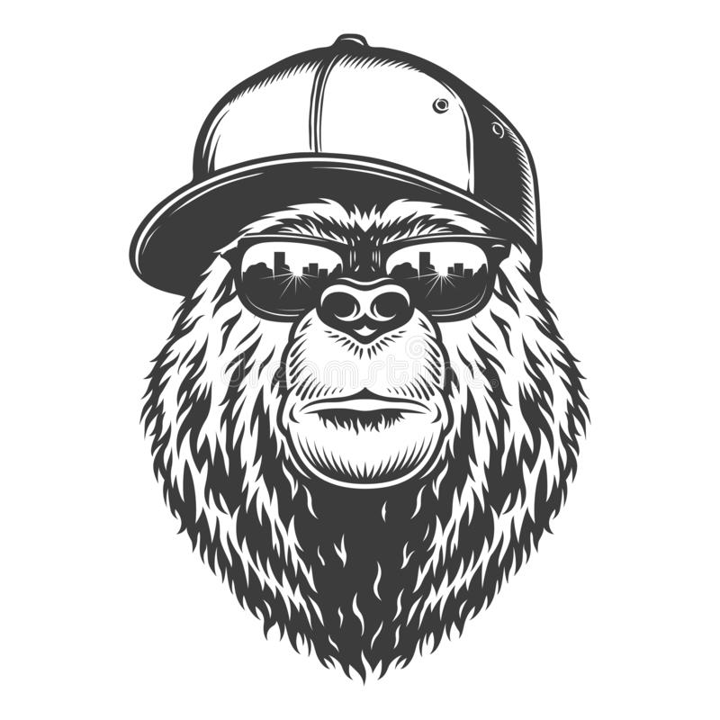 Tête élégante monochrome d'ours de cru illustration stock
