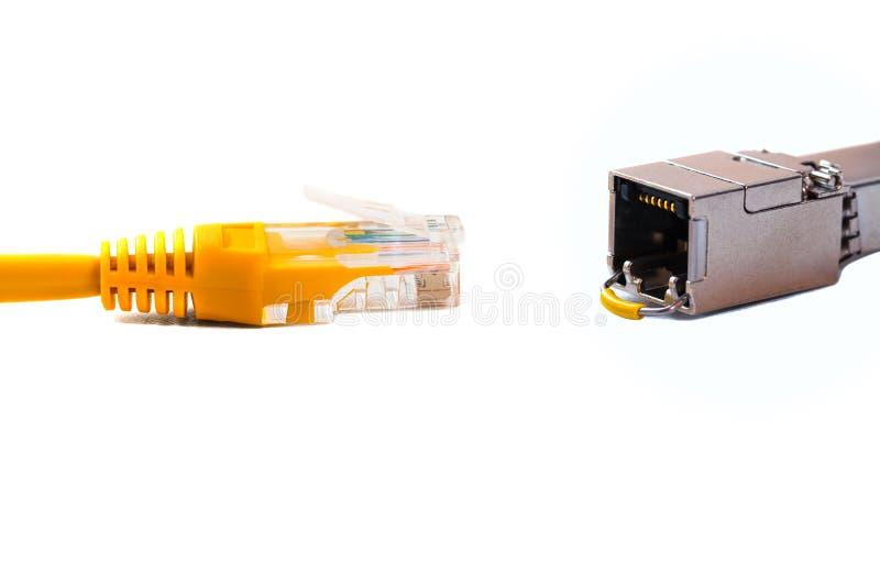 Tête capable de ¡ de Ð dans la tête rj45 d'un câble d'Ethernet ou d'une correction-corde jaune avec le twisted pair et le module  images libres de droits