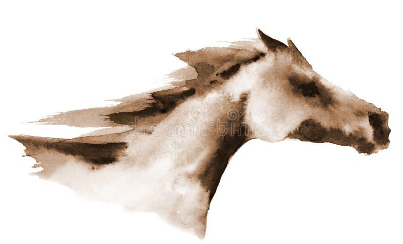 Tête d'aquarelle de cheval galopant sur le blanc illustration stock