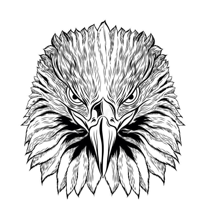 Tête d'Eagle Black et de blanc, Front View Eagle Head, illustration de vecteur illustration libre de droits