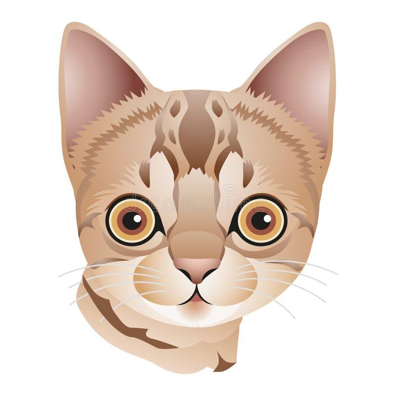 Tête d'un chaton brun clair avec de grands yeux, bande dessinée sur le fond blanc illustration de vecteur