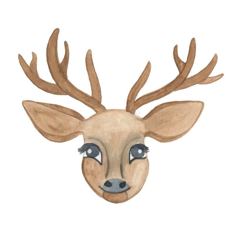 Tête de cerfs communs d'aquarelle avec des andouillers d'isolement sur le fond blanc illustration stock