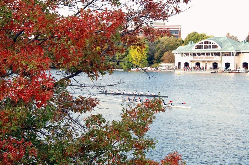 Download Tête De Charles Regatta à Cambridge, Le Massachusetts Photo éditorial - Image du ramer, bateaux: 87701131