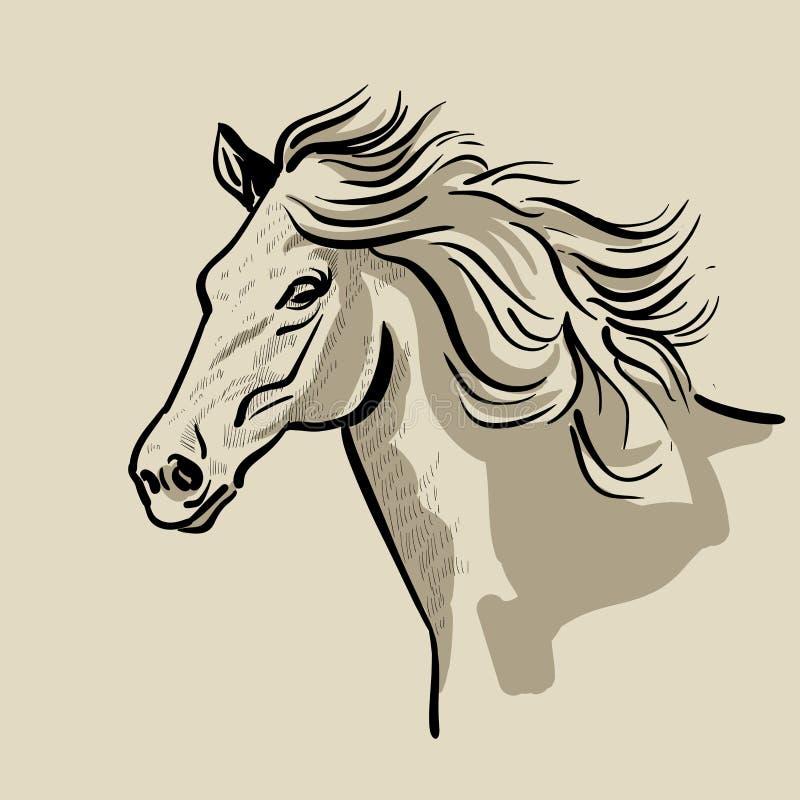Tête de cheval avec une crinière Illustration tirée par la main de vecteur illustration stock