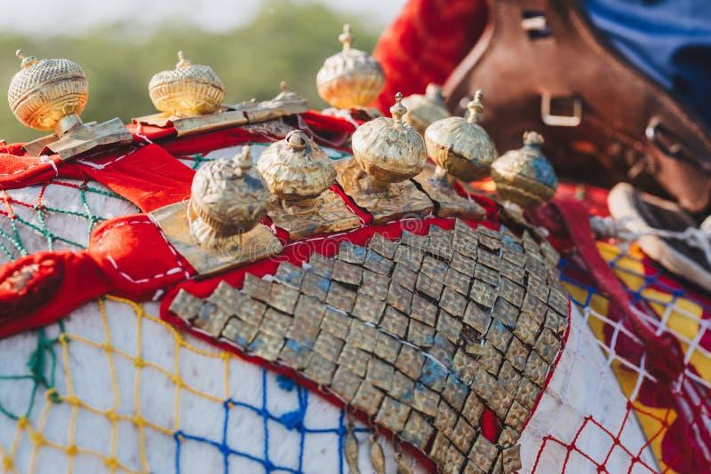 Tête de cheval indien coloré décoré dans Jaisalmer, Rajastha images stock