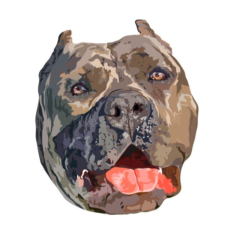 Tête de chien américaine de despote illustration de vecteur