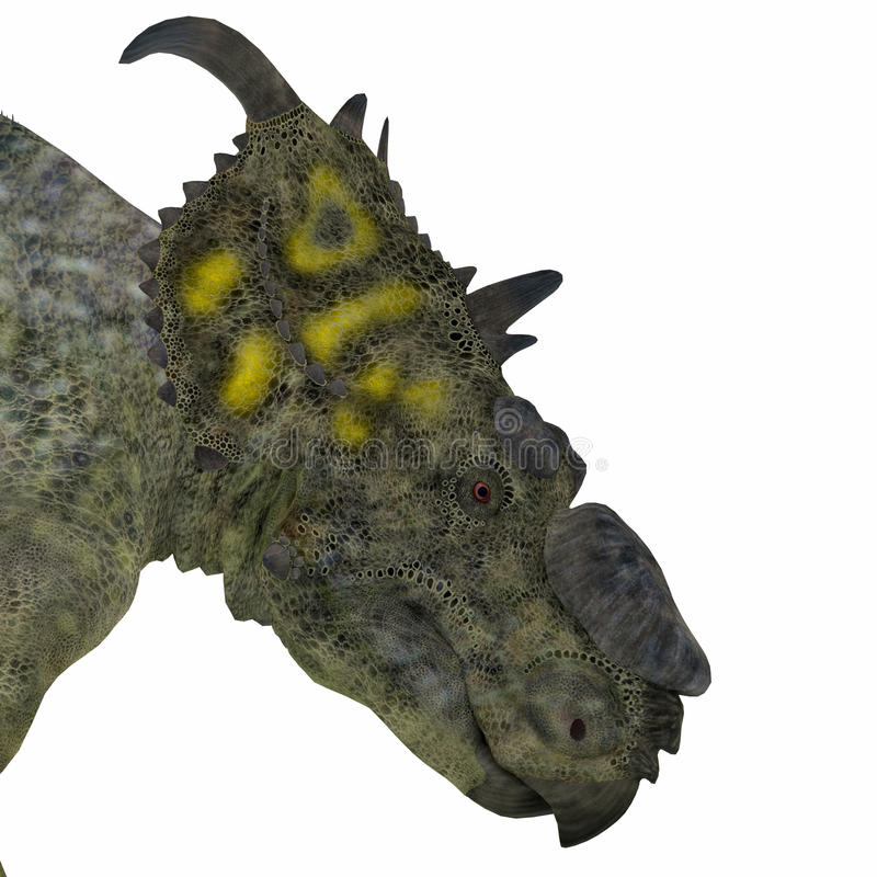 Tête de dinosaure de Pachyrhinosaurus illustration de vecteur