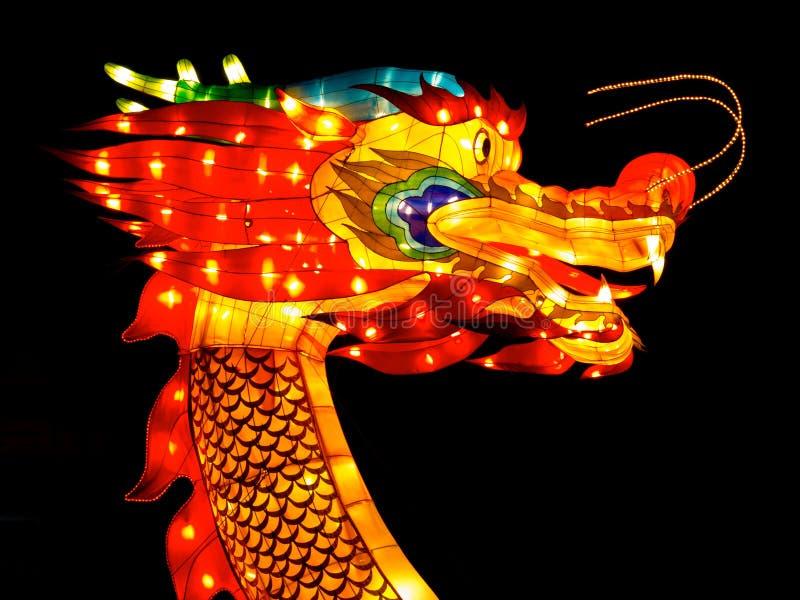 Tête de dragon photos stock