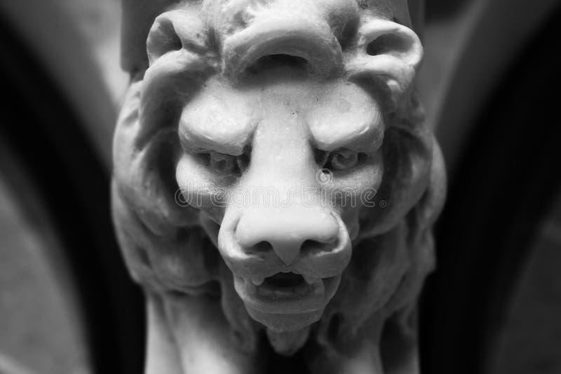 Tête de lion image libre de droits