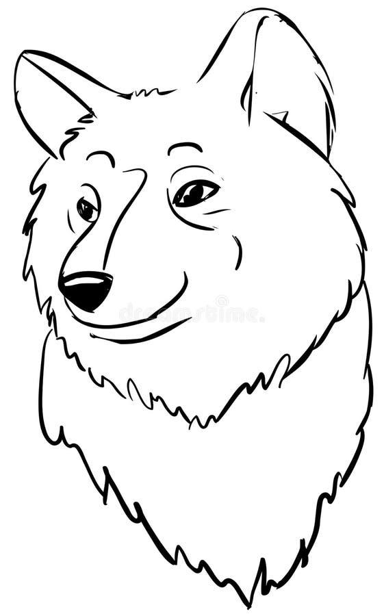 02 tête de loup illustration libre de droits