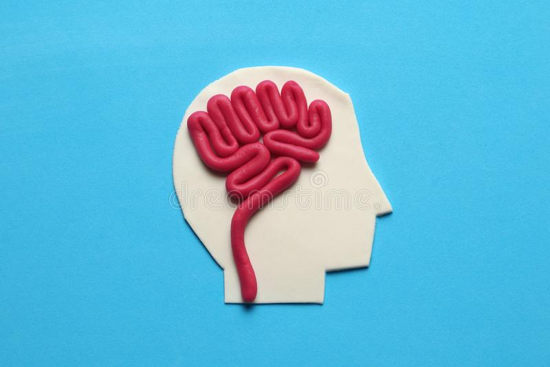 Tête de pâte à modeler et concept de cerveau Esprit futé, la connaissance de neurologie image libre de droits