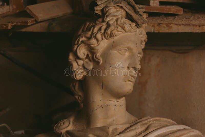 Tête de plâtre d'Apollo Belvedere photos libres de droits
