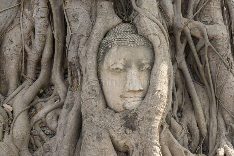 Tête de statue de Bouddha photo stock
