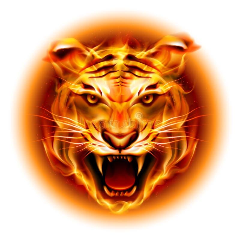 Tête de tigre du feu illustration libre de droits