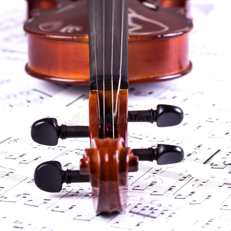 Tête de violon images libres de droits