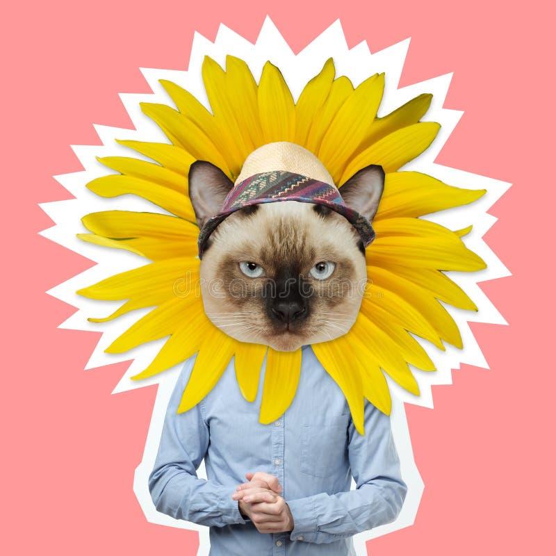 Tête drôle de chat avec le corps humain dans la chemise de gblue photographie stock libre de droits