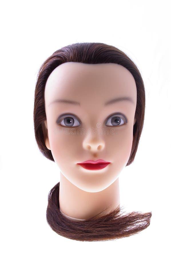 Tête femelle de mannequin avec les cheveux bruns photographie stock