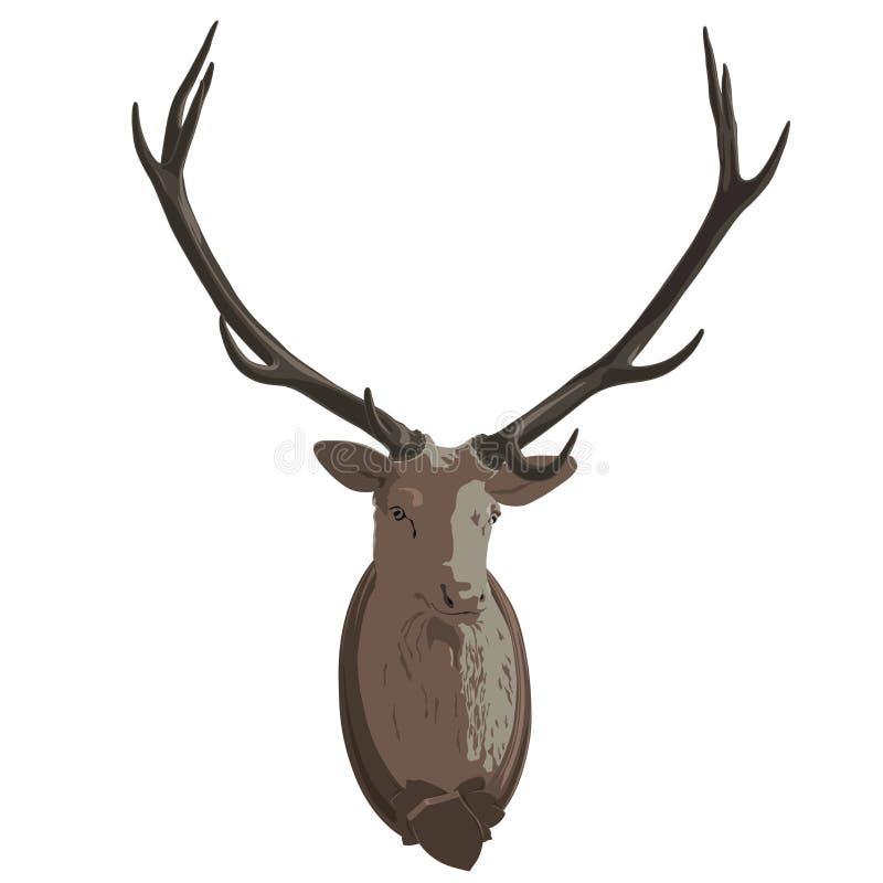 Tête montée de cerfs communs Mâle bourré, andouillers monumentaux Trophée antique de chasse illustration de vecteur