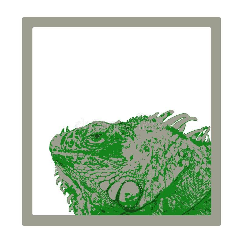 Tête verte d'iguane dans le cadre gris illustration libre de droits