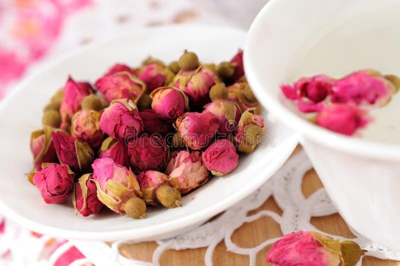Têtes de fleur roses sèches image libre de droits