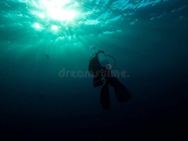 Têtes de plongeur autonome sur la surface photo stock