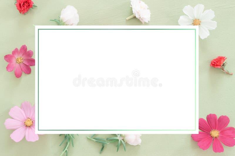 Têtes de roses de fleur sur le fond en bon état photographie stock libre de droits