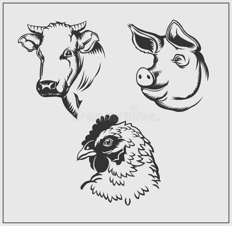 Têtes des animaux de ferme Vache, porc et poulet illustration stock