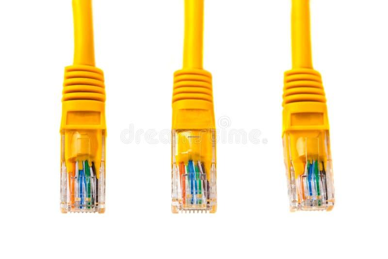 Têtes tricâbles dans la tête rj45 d'un câble d'Ethernet ou d'une correction-corde jaune avec le twisted pair , réseau, RJ45, pris photo libre de droits