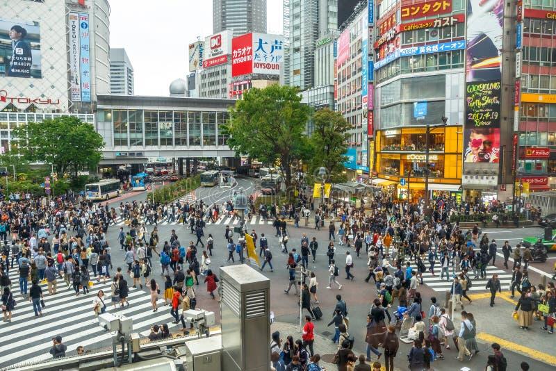 Tóquio do cruzamento de Shibuya imagem de stock royalty free