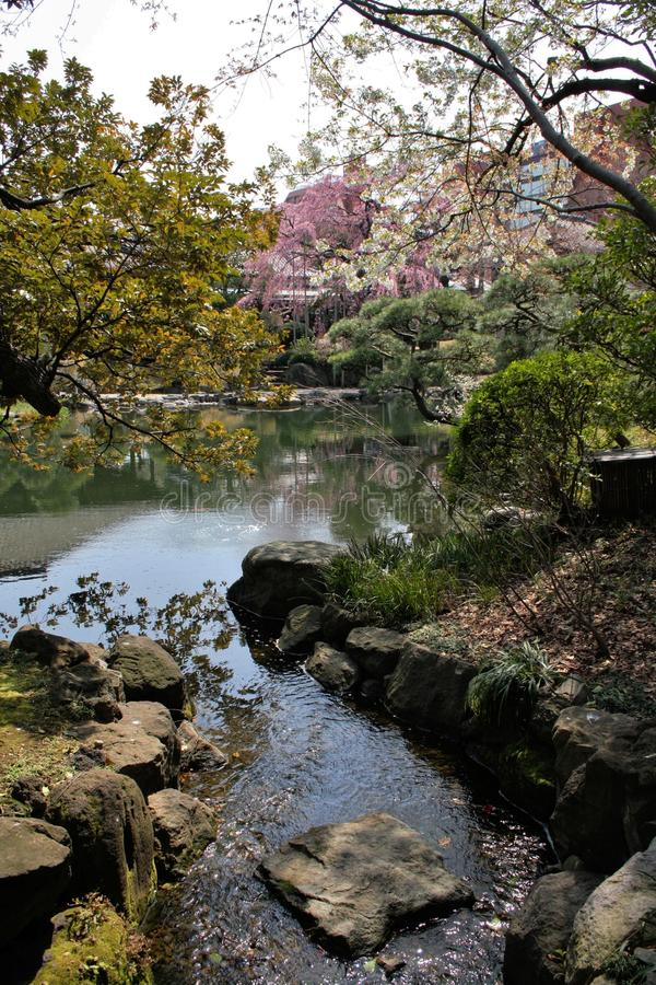 Tóquio do templo de Denpoin imagem de stock