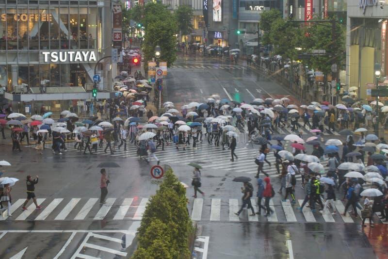 TÓQUIO, JAPÃO - 30 DE MAIO: Pedestres não identificados na cruz de Shibuya foto de stock