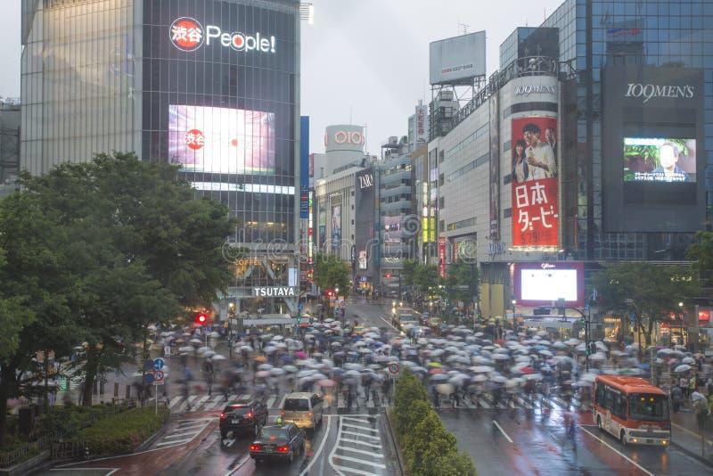 TÓQUIO, JAPÃO - 30 DE MAIO: Pedestres não identificados na cruz de Shibuya imagem de stock royalty free