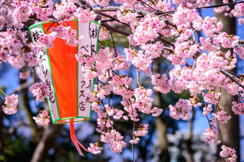Tóquio na mola foto de stock