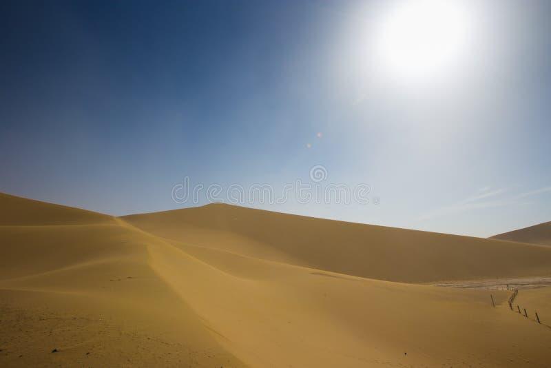Töm öknen i sandstorm över sommar för blå himmel på siden- väg royaltyfria bilder