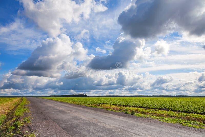 Töm asfaltlandsvägen med molnig himmel fotografering för bildbyråer
