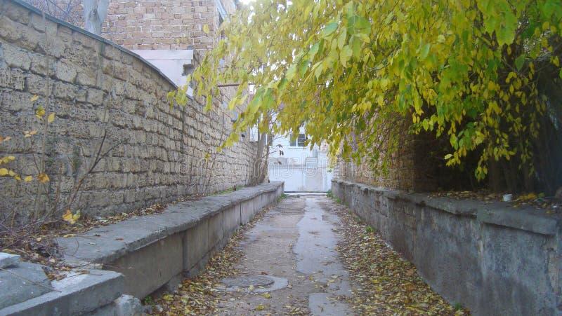 Töm den raka smala gränden mellan tegelstenväggar i den gamla staden, på en molnig dag royaltyfri fotografi