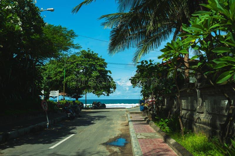 Töm den smala gatan med tropiska palmträd och en magisk sikt av turkoshavet tropisk strandmorgon royaltyfria foton