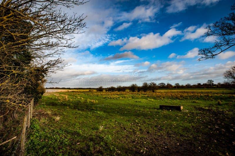 Töm fältet och stormig himmel royaltyfri foto