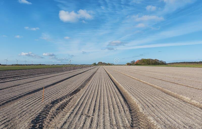 Töm fältet som är förberett för att plantera arkivbild