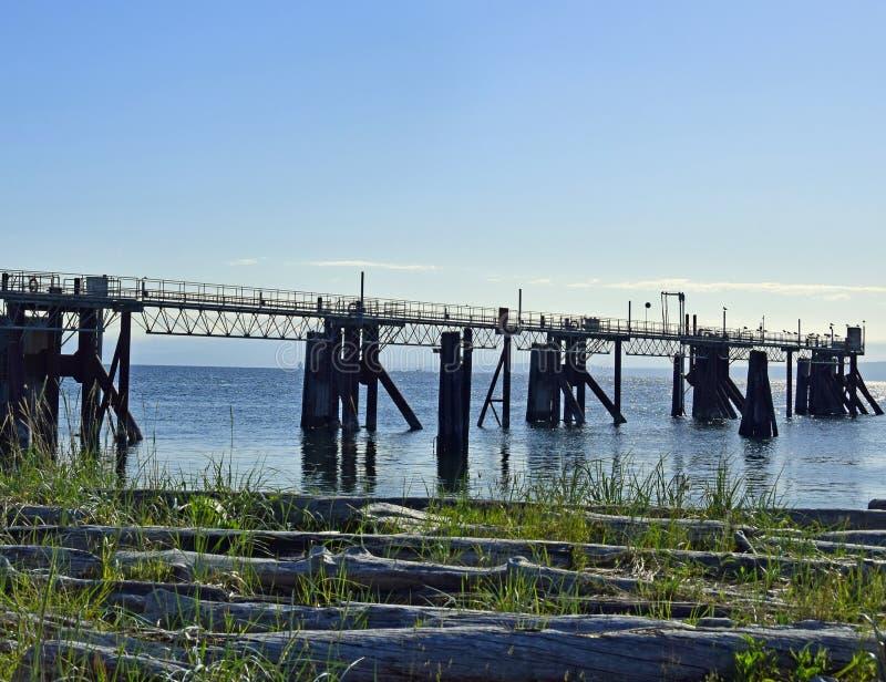 Töm färjapir på den lilla floden Comox royaltyfri foto