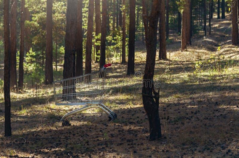 Töm vagnen för stålsupermarketshopping med röda handtag på Forest Clearing som är djup i ett trä Minimalist uppehälle Skydda glob royaltyfria foton