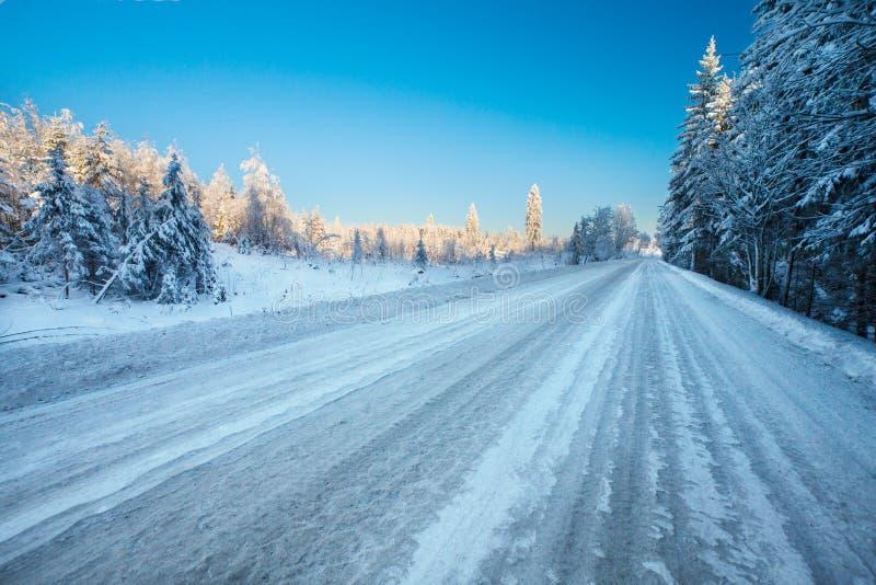 Töm vintervägen med is-oljefläck och snöa till och med snöig fält och skog royaltyfri fotografi