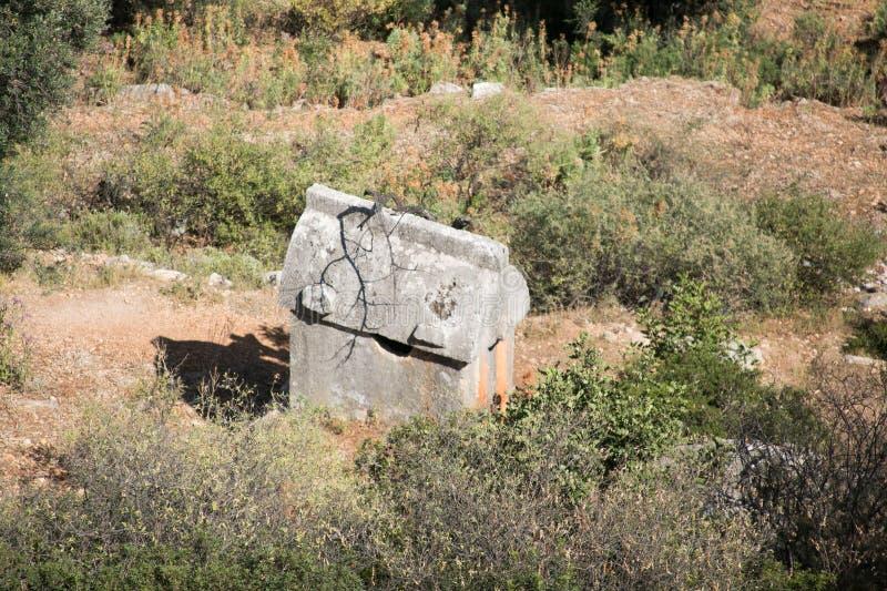 Túmulo de Lycian cercado por arbustos fotografia de stock royalty free