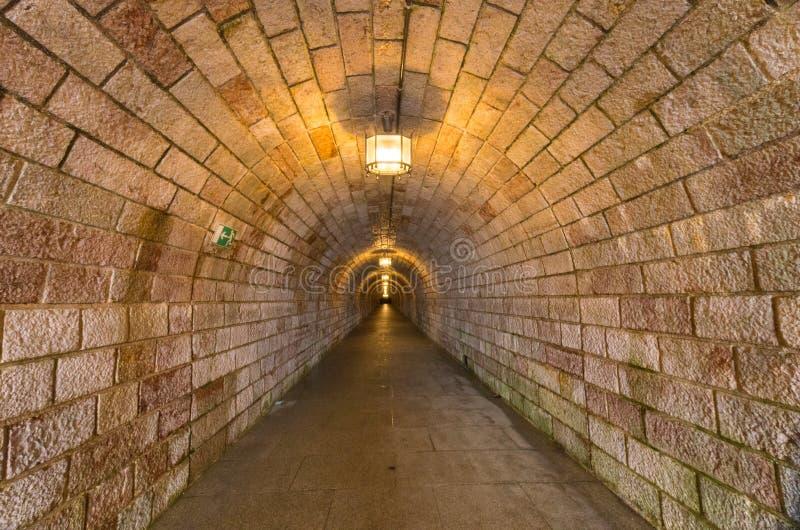 Túnel ao ninho do ` s de Eagle fotografia de stock royalty free