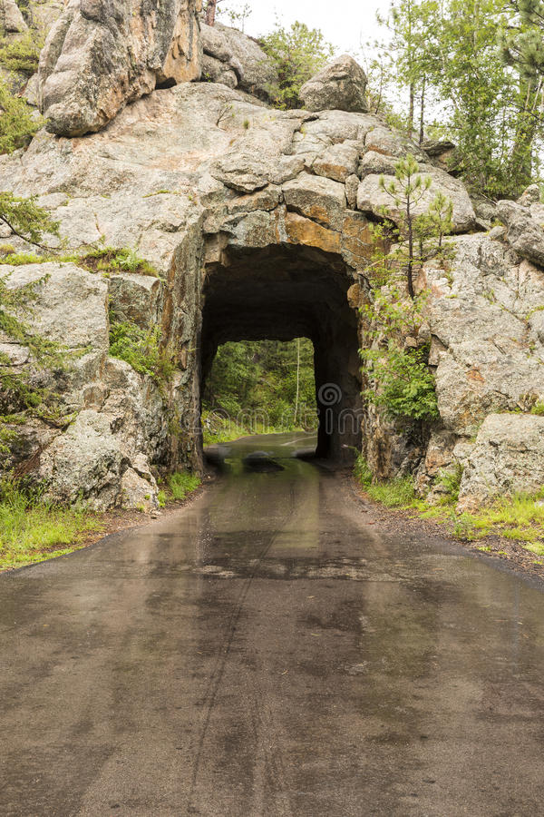 Túnel da angra do ferro imagem de stock