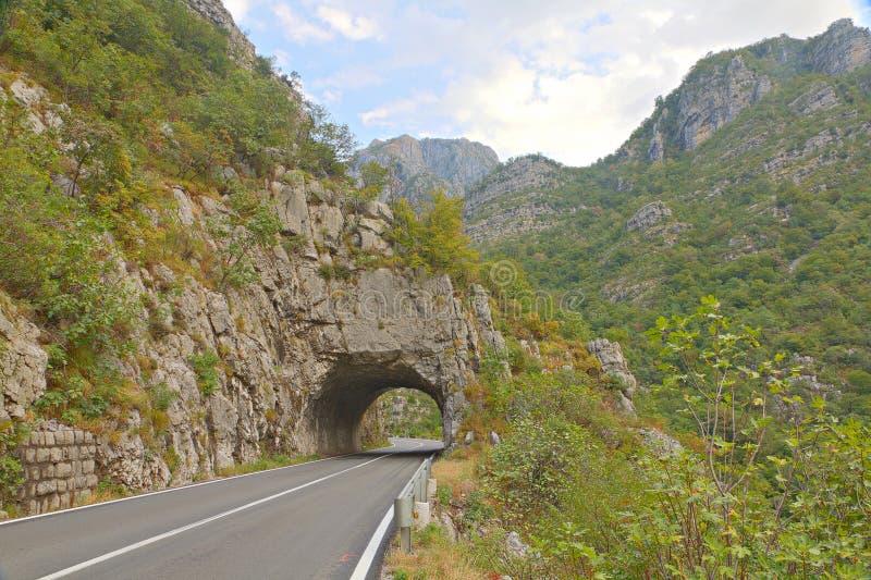 Túnel da estrada na garganta verde de Tara, Montenegro imagens de stock